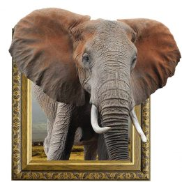 Elephantinframewith3deffect